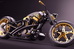 GoldSter - Custom bike project