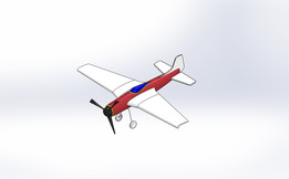 P51 Mustang Plane