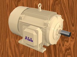 Abb Style 40Kw Motor with left terminal connection