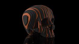 Solid Part Skull