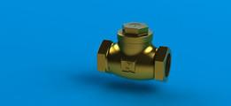 "lift check valves horizontal 2"""