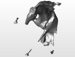 Horse Cal Brasov