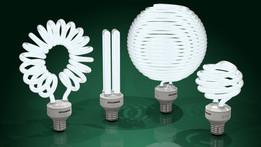 Compact fluorescent light bulbs - CFLs