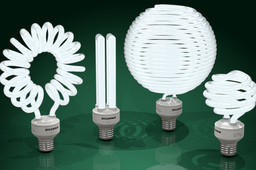 Compact fluorescent light bulbs - CFLs