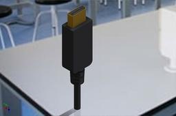 Display Port Plug
