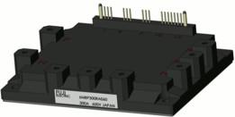 Fuji IPM IGBT-6MBP300RA060