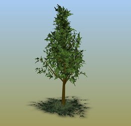 tree - Most downloaded models | 3D CAD Model Collection