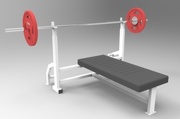 chest press / bench press / Barbell gym