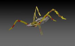 Banana spider, 3d model, puzzle, sheetmetal