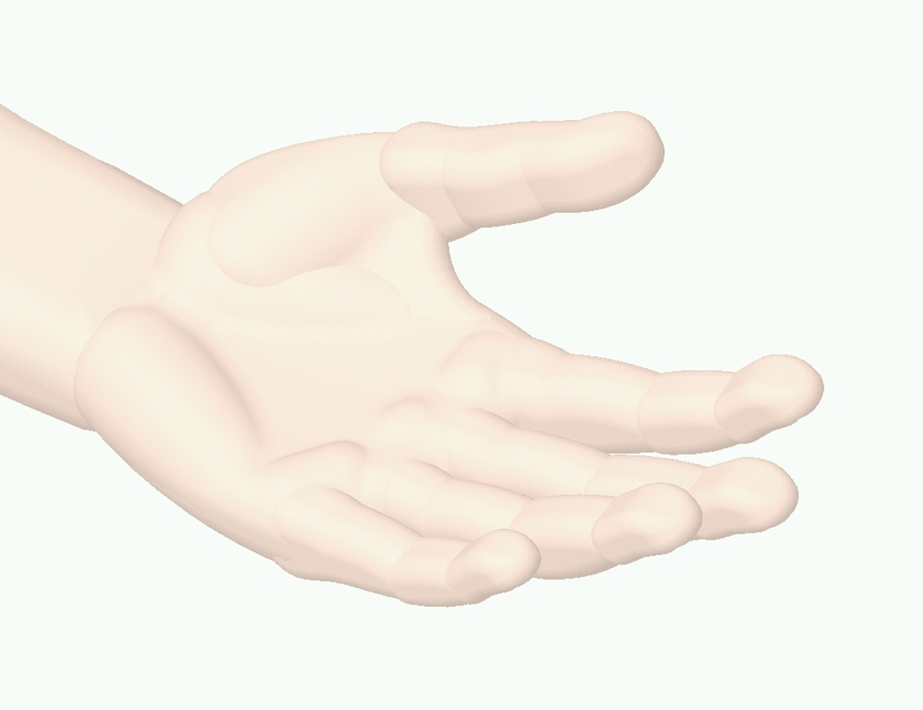 human left hand | 3D CAD Model Library | GrabCAD
