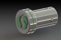 Plug and ring