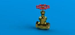 "Globe valve 2.1/2"" NPT"