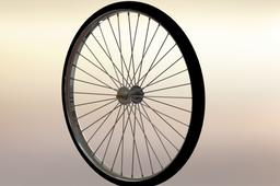 Bicycle tire and wheel assembly